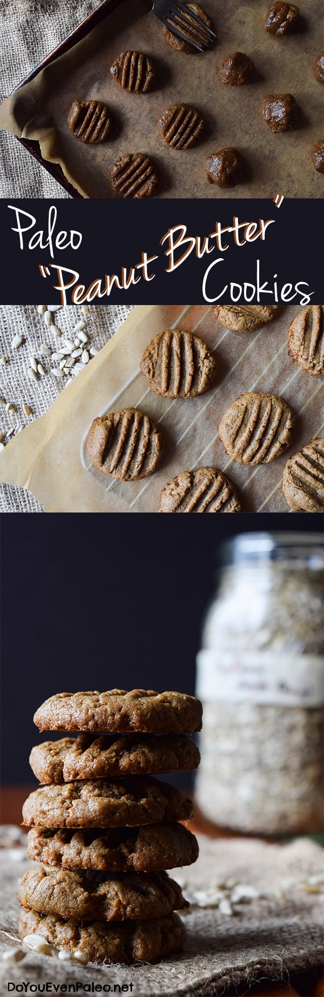 """Paleo """"Peanut Butter"""" Cookies 