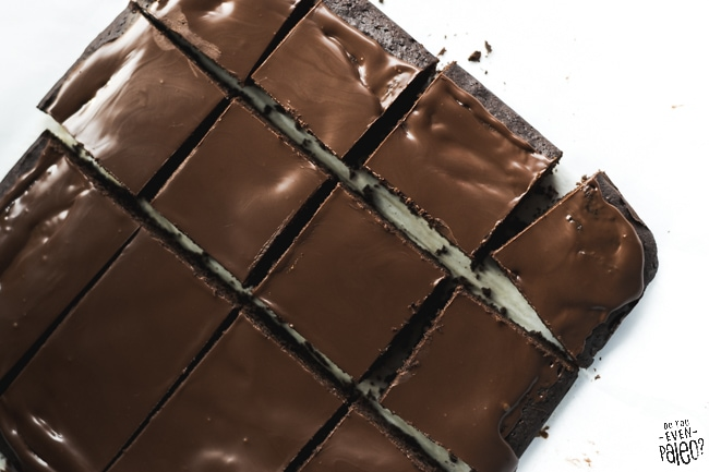 Paleo & Gluten Free Frosted Gingerbread Brownies | DoYouEvenPaleo.net