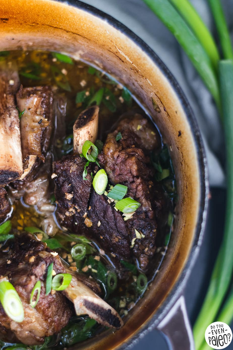Paleo Braised Ginger Scallion Short Ribs with Cauliflower Rice | DoYouEvenPaleo.net