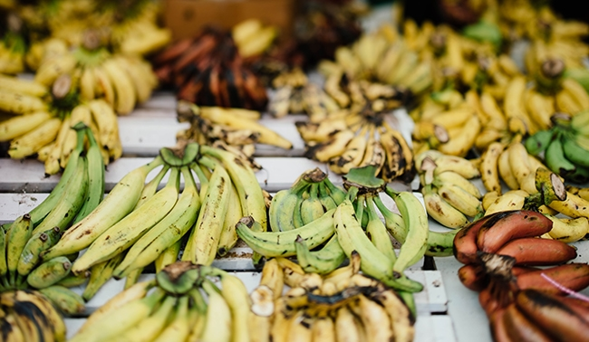 All About Plantains: Nutrition, What They Are, and How to Cook with Them!