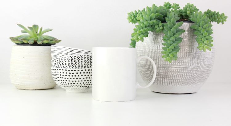 White mug surrounded by small potted plants