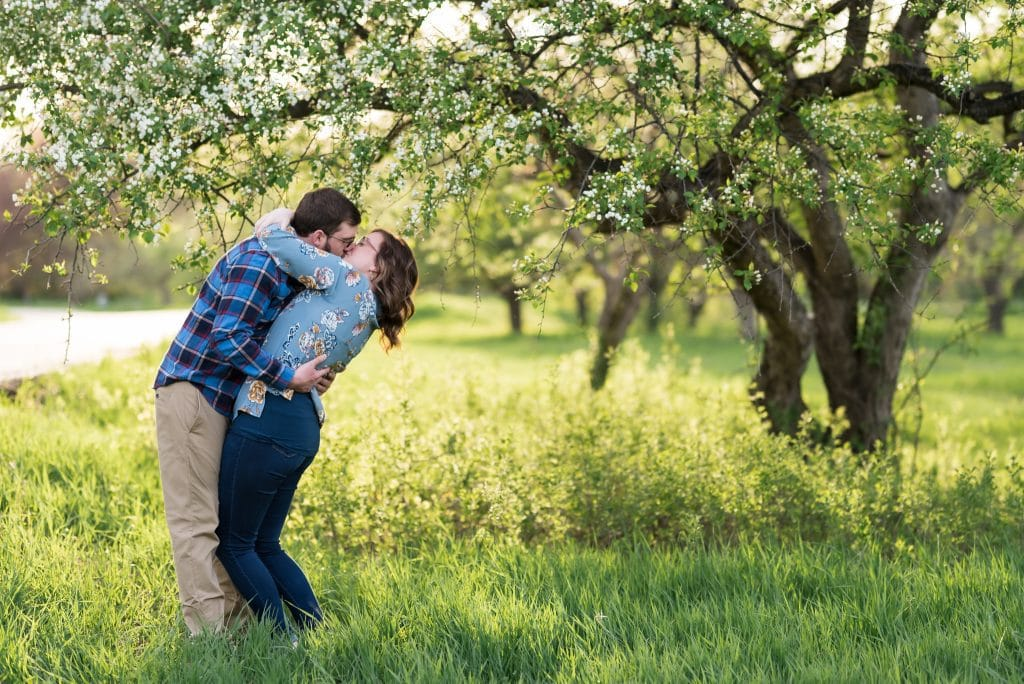 Couple kissing under a blossoming apple tree - Chelsea Joy Photography