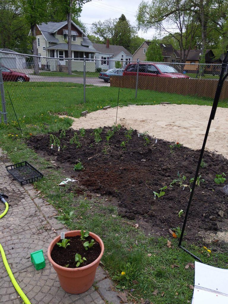The start of a small garden plot